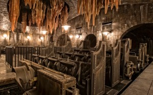 HP-and-the-Escape-from-Gringotts-2-1170x731